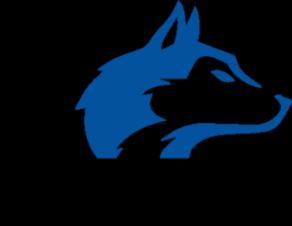 STV Wolfenschiessen Logo